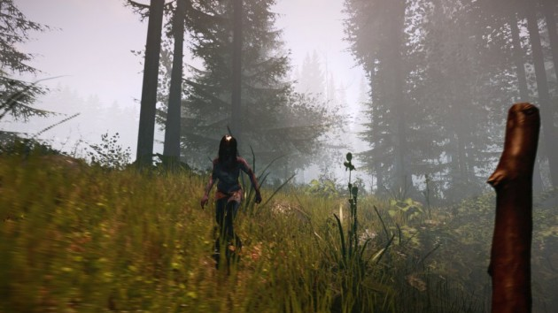 05 the forest of Early Access
