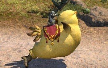 Fat Chocobo - FFXIV