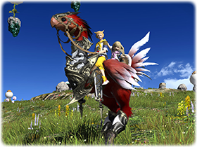 Red Draught Chocobo FFXIV